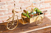 "22""W Bike Planter for Miniature Fairy Gardens - EXCLUSIVE"