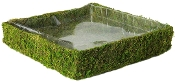 Green Moss 15x15 Planter with Liner for Miniature Fairy Gardens