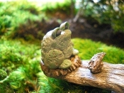 Mini Frog for Miniature Fairy Gardens