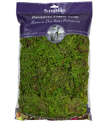 4Oz Bag Preserved Forest Moss for Fairy Garden