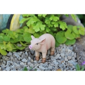 Bacon the Piglet for Miniature Fairy Gardens